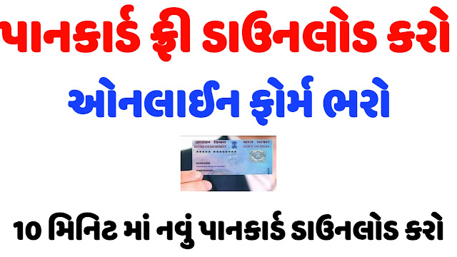 Income Tax Department Issue e-Pan card For Free