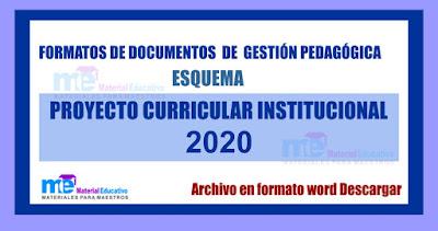 Formato proyecto curricular institucional