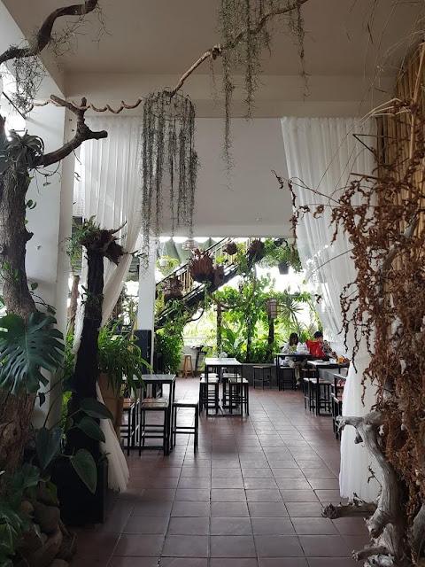 decor với các cây xanh cho cảm giác như lạc vào một khu rừng nhiệt đới