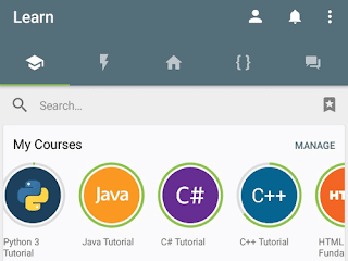 Sololearn app for learning programming and web design courses