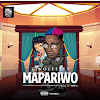 "Download MP3: Zinoleesky - ""Mapariwo""."