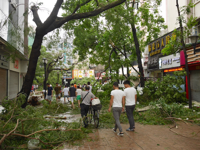 damage from Typhoon Hato at the Lianhua Road Pedestrian Street (莲花路步行街) in Zhuhai, China