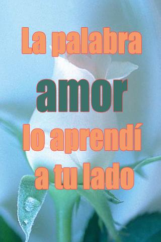 La palabra amor lo aprendí a tu lado