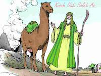 Kisah Nabi Saleh As. lengkap