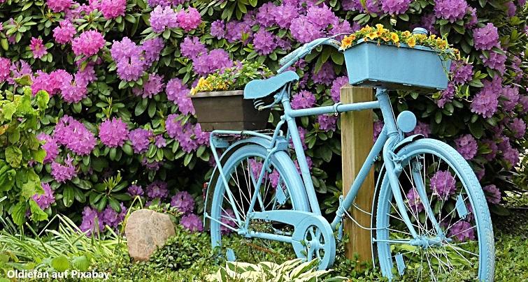 Altes Rad als Gartendeko