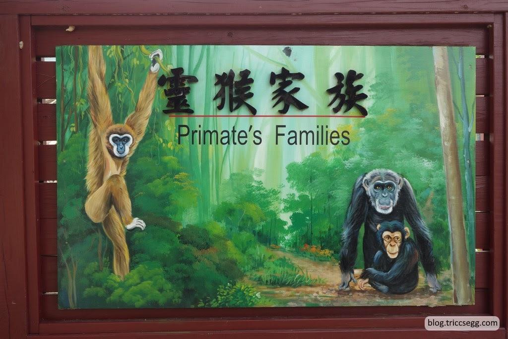 新竹市立動物園(22).JPG