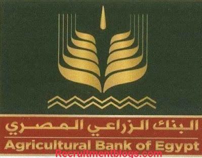 التدريب الصيفي للطلبة في البنك الزراعي المصري لعام ۲۰۲۱