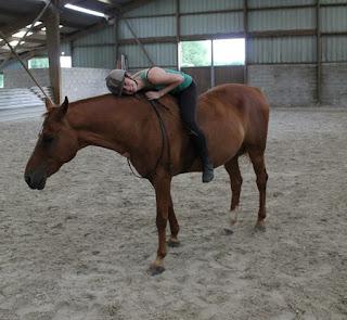 Un gentil cheval... mais pas facile.