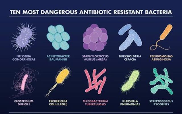 Superbugs, Bakteri Kebal yang Sebabkan Sel Kanker Makin Berkembang