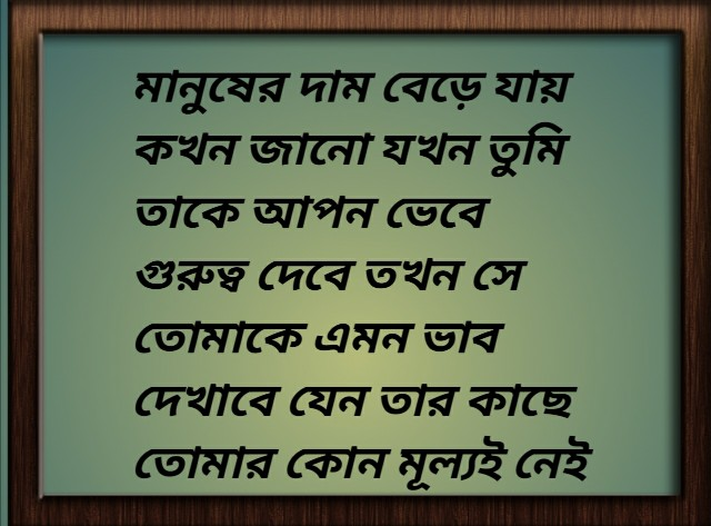 bangla sad and love shayari photo