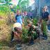 Babinsa Pucang Sawit Pelopori Warganya Untuk Penghijauan