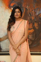 Eesha Rebba in beautiful peach saree at Darshakudu pre release ~  Exclusive Celebrities Galleries 074.JPG