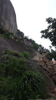 Pedra da Gávea Carrasqueira