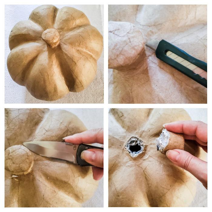 remove pumpkin stem