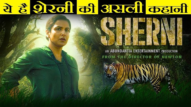 शेरनी' Movie review in Hindi जंगल राज में 'सुपरमैन' बनकर उभरती हैं Vidya Balan