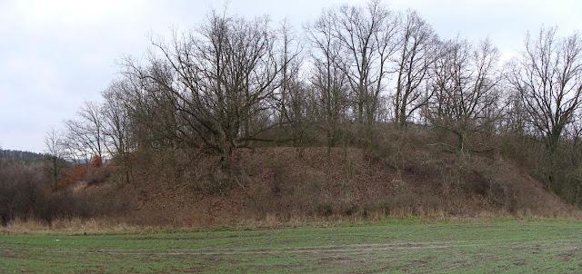 Poganka - wczesnośredniowieczne grodzisko pierścieniowate we wsi Wabcz