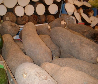 How To Plant Yam Tubers