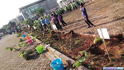 Undip Siapkan Ratusan Bibit Pohon Untuk HIjaukan RSND