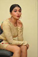 Actress Pooja Roshan Stills in Golden Short Dress at Box Movie Audio Launch  0091.JPG