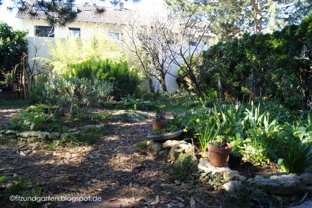 Blick in den Garten zum Frühlingsbeginn