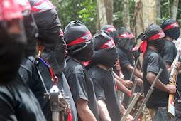 Iqbal Alqudusy Sebut KKB di Papua Bergerak di Kabupaten Puncak, Mimika, Intan Jaya dan Nduga