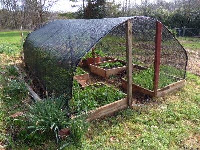 garden shade cloth. Shade Cloth \u0026 Thoughts On The Hoop House Garden