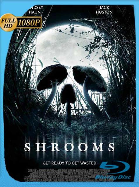 Shrooms (2007) HD [1080p] Latino [GoogleDrive] SilvestreHD