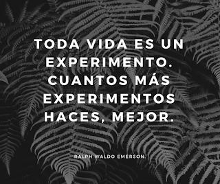 La vida es un experimento.Cuanto más experimentos haces, mejor.  Ralph Waldo Emerson.