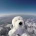 Μαθητές έστειλαν σκύλο στο διάστημα...