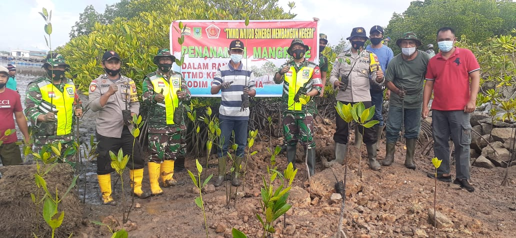 Satgas TMMD Kodim 0318/Natuna, Bersama Masyarakat Melaksanakan Penanaman Pohon Mangrove di Pinggir Pantai Pering