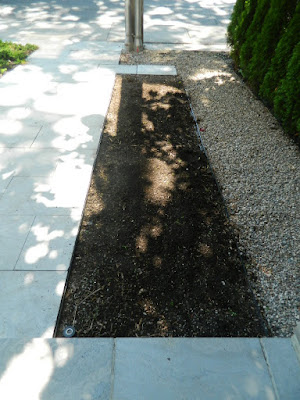 Toronto King West Village front garden cleanup after by Paul Jung Gardening Services