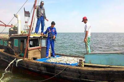 Maling Ikan di Kawasan Perairan Indonesia, 9 Warga Singapura Berhasil Diringkus TNI AL - Commando