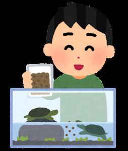ペットの亀に餌を上げる人のイラスト(男性)