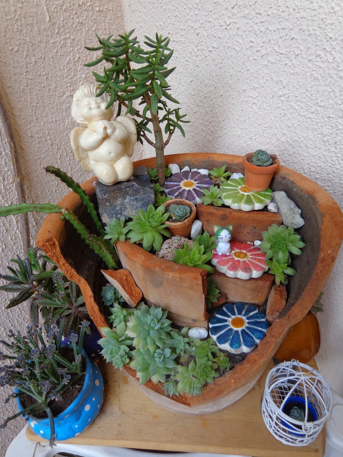 mini jardim cactos suculentas : mini jardim cactos suculentas:Mini-jardim com vaso quebrado: muito amor