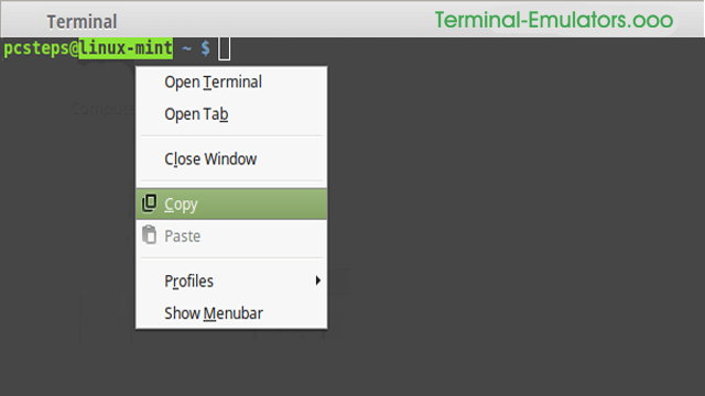 android terminal emulator copy paste