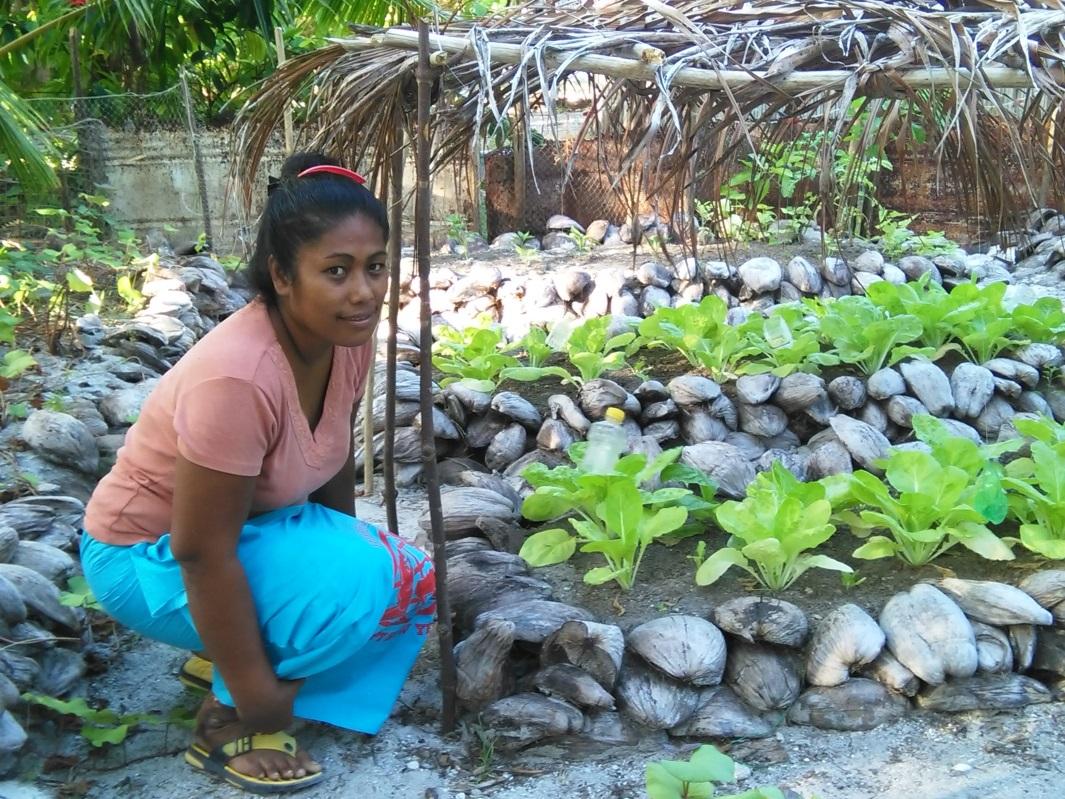 Ifad Social Reporting Blog Home Gardening In Kiribati