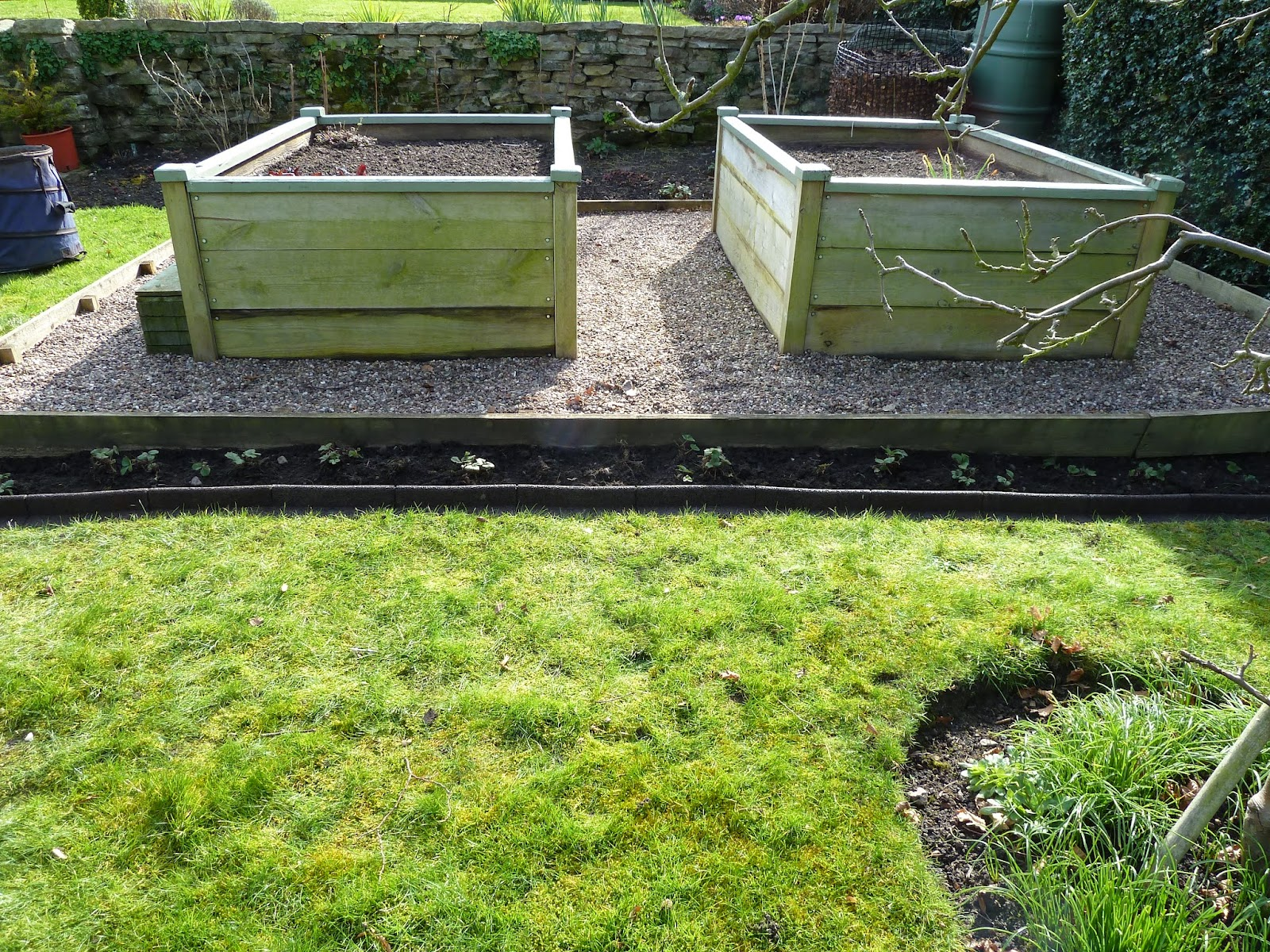 Vegetable Raised Beds for bad backs