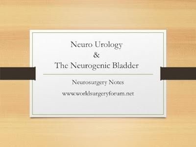 Neuro Urology and The Neurogenic Bladder