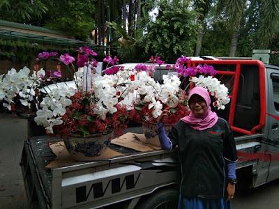 profil-agustina-florist-surabaya
