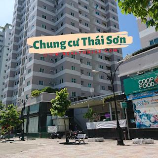 Cho thuê chung cư Thái Sơn 02 phòng ngủ quận Bình Tân