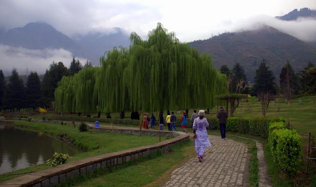 jawaharlal nehru botanical gardens srinagar kashmir india