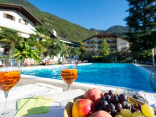 Apfelhotel Torgglerhof in Saltaus im Passeiertal