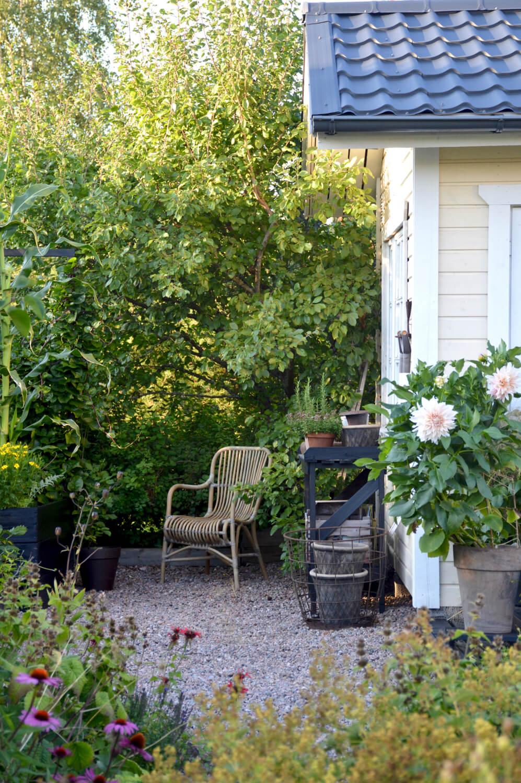 puutarha elokuussa