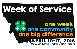 http://www.mt4hservice.org/
