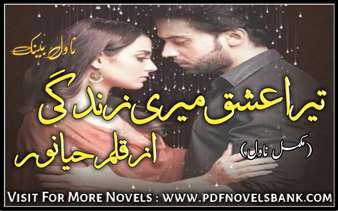 Tera Ishq Meri Zindagi by Haya Noor Novel Complete Pdf Download