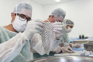 Governo Federal - Pagamento de bolsas de pesquisa não está garantido, diz secretário
