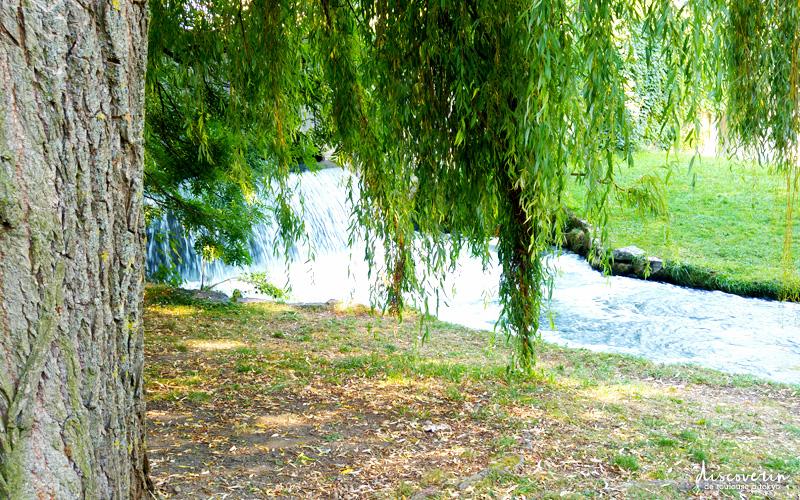 Le Jardin Anglais de Munich