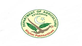 Directorate General Agriculture KPK Jobs 2021 in Pakistan