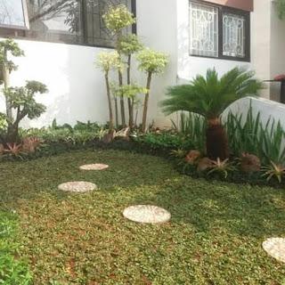 Tukang Taman Bogor Barat - Tukang Rumput Taman - Jasa Tukang Taman Dibogor