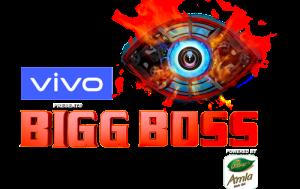 Bigg Boss Season 13 Watch in Hindi HD Free